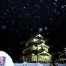 雪燈籠まつり XVI