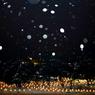 雪燈籠まつり XXIII