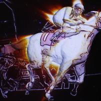 白馬、駆ける