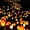 伊豆 韮山竹灯籠祭り