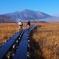 朝霧の尾瀬ヶ原(至仏山に向かって歩く)
