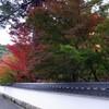 京都2009