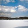 羽鳥湖早春の風景