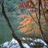 鎌北湖 ~静かな朝の紅葉~