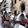 フィレンツェ(馬車)