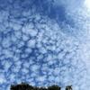 うろこ雲 (2)