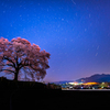 桜と星の舞