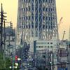 東京スカイツリー成長記録 09.12.10