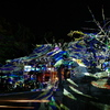 京都嵐山花灯路&大阪光のルネサンス