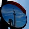 リアル鏡ツリー