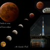 October 8, 2014 total lunar eclipse