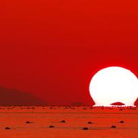 播磨灘に沈む夕日(2014年秋)