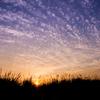 大観峰の朝日