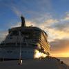 世界最大!豪華客船オアシス号で行くカリブ海