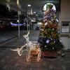 クリスマスイルミネーションin洋光台
