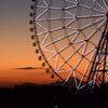 葛西臨海公園 観覧車と富士山