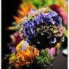 結婚式の写真 29