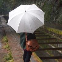 雨のインクライン