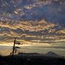 SEL24240テスト 富士山