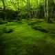 深緑の祇王寺4