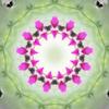 Flower dish1
