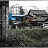 「道草」小江戸川越散歩92