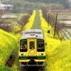 線路のある風景Ⅳ~雨の日~