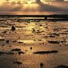 引き潮の夕景