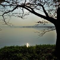 琵琶湖北湖を行く