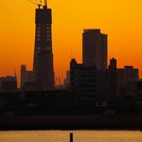 東京スカイツリー成長記録 2009.12.23