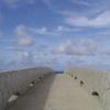 海に続く橋