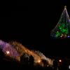 宮ケ瀬の大階段とクリスマスツリー