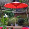 紅い野点傘