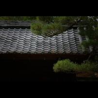 秋のぶらり京都 01