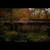 秋のぶらり京都 10