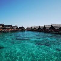 シパダン島ダイビング