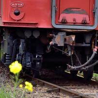 小湊鉄道の春 2016