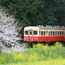 桜キハ200系⑥
