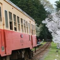 桜キハ200系⑨