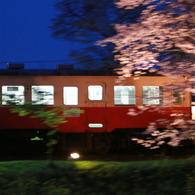 夜桜小湊鉄道④