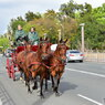 馬車(祭り用馬車)