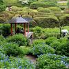 花寺の雨情景