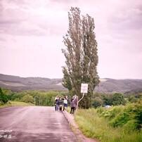 美瑛の丘にて