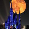 月とシンデレラ城