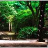 「雨栗日柿(あまぐりひがき)」 小江戸川越散歩115
