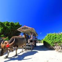 八重山諸島の風景