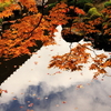 当麻寺西南院の紅葉