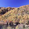 晩秋の西沢渓谷