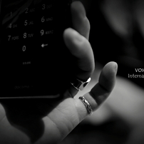 VOICE Int`l   Gallery