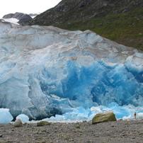 リード氷河